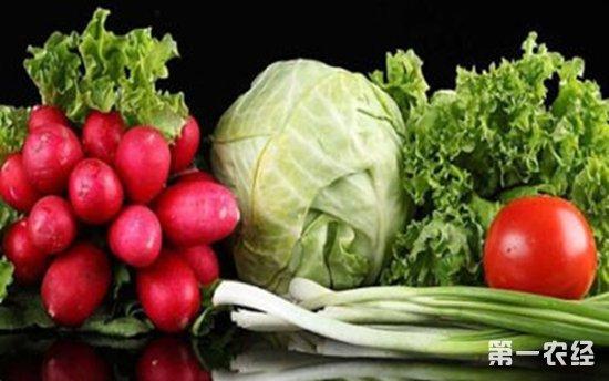 上周全国30种蔬菜平均批发价格下跌1.2%