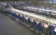 <b>家禽养殖业:全球家禽贸易或面临数十年来最大规模市场整合</b>