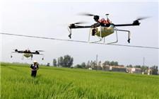 河南西华推广无人机植保 低成本高效率