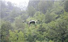 北京林业局动用无人机监测林业虫害