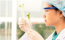 中国农业科研团队发现土壤磷素调控机理