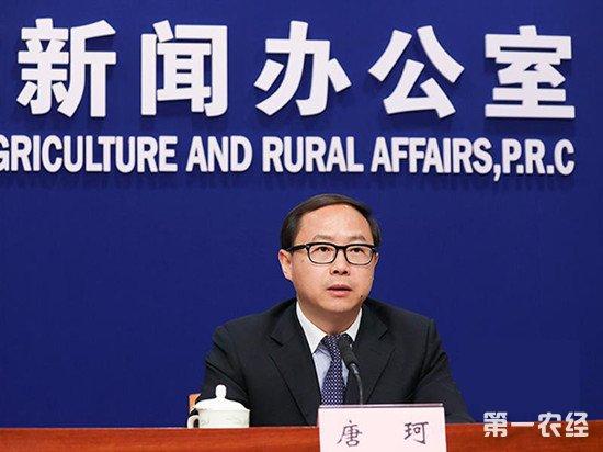 农业农村部提醒:切勿盲目扩大玉米种植范围