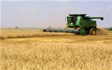 内蒙古:确保粮食种植面积在8000万亩以上