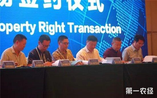 第二届中国国际水稻论坛在三亚举行
