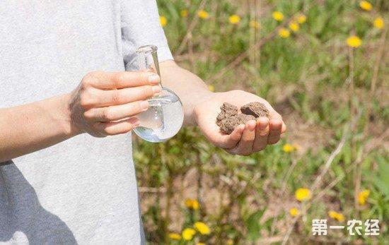 广西测定大片富硒富锗土地 将有助于高品质农产品生产