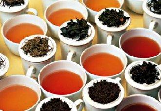 怎么品茶?品茶步骤介绍