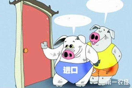 巴西对华猪肉出口量猛增151.6% 中国对美国产猪肉加征25%关税