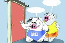 <b>巴西对华猪肉出口量猛增151.6% 中国对美国产猪肉加征25%关税</b>