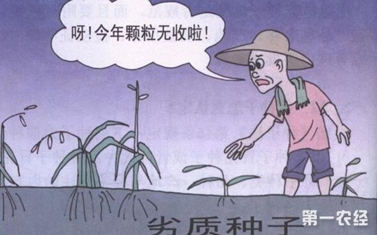 春耕时期购买农资需谨慎 假劣农资商品充斥市场