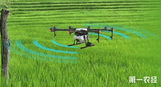 植保无人机的第五年,为什么论前景还是看大疆农业?