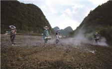 大棚土地彻底消毒方法