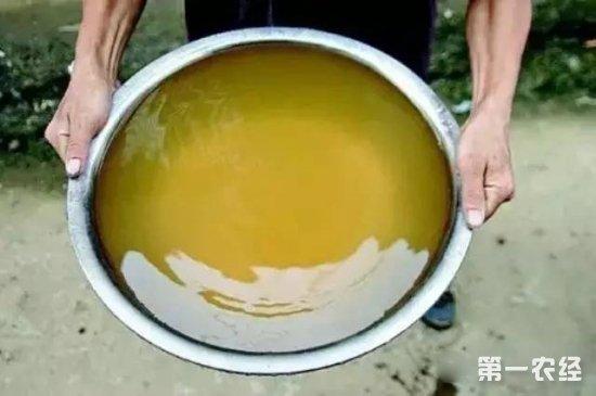 无土栽培培养液怎么得?教你如何自制无土栽培液