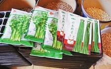 湖北随州:7家农资违法经销商被约谈 违法种子就地封存销毁