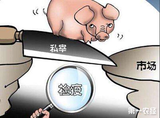 南宁开展私屠滥宰行为暗访和整治行动