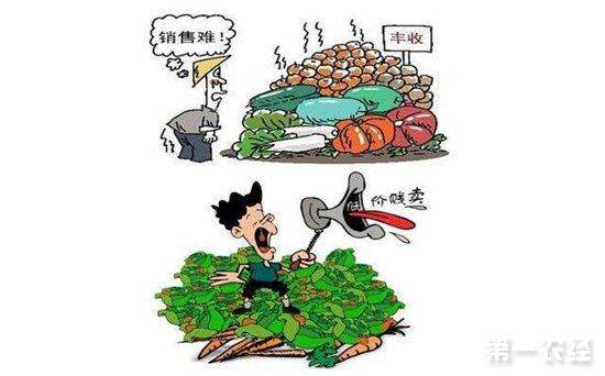 农产品滞销怎么办?多地农民心急如焚寝食难安