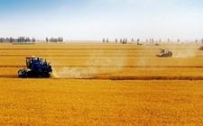 为什么申请不到国家农业贷款?农户申请不到贷款补贴的原因?