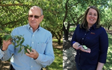 <b>美国加州巴旦木种植业农民盼中美恢复正常贸易</b>