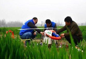 陕西:用无人机喷洒农药 争取让小麦减灾保产