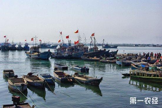 南海进入为期三个月的休渔期