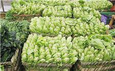 贵州省安顺市:农业供给侧改革 由市场下订单