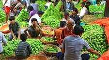<b>印度扩大农产品出口寻求更大市场 与8个国家和地区签署农产品出口协议</b>
