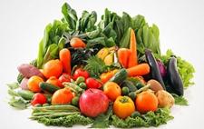 韩国研发出能检测15种果蔬病毒的检测工具