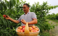 韩长赋:建设生态美丽的乡村 提高农村农民的幸福感