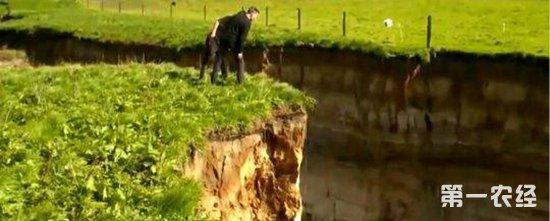 新西兰北岛暴雨致地面塌陷 形成深达20米的大裂谷