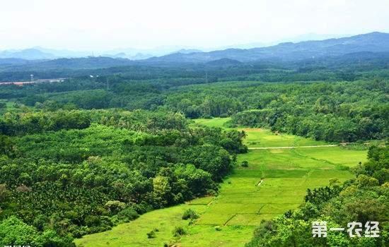山西:生态治理和脱贫攻坚结合 预计今年退耕还林195万亩