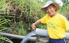 台湾屏东:新埤乡地下水变少 畜牧业污染和用水严重或为元凶
