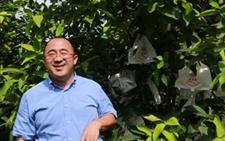 """海南自贸区利好农发贷创新金融""""贷动""""农业产业升级"""