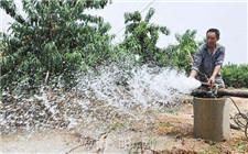 苹果树什么时候浇水最好?苹果园浇水管理
