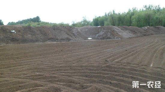 山东郓城鼓励推广有机肥 废物利用效果好