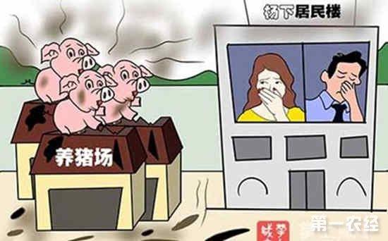广州增城区开展新一轮畜禽养殖污染整治行动