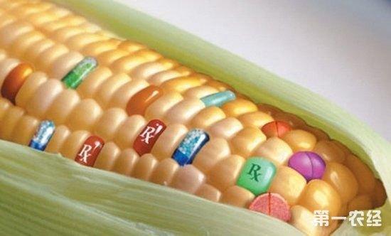 美国拟强制要求转基因食品使用强制标识