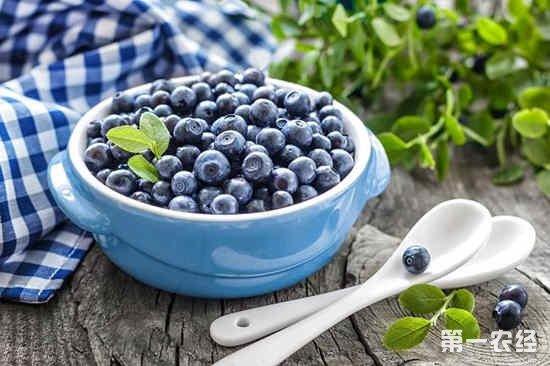 2018年蓝莓市场行情如何?国产蓝莓为什么比进口的还要贵一倍?