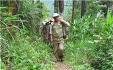 <b>30年森林覆盖率翻倍 生态环境成海南最大旅游优势</b>
