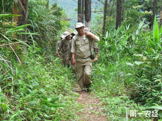 30年森林覆盖率翻倍 生态环境成海南最大旅游优势