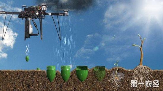 湖南使用无人机在难种植地区实施精确播种