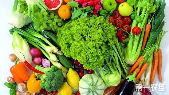 山东德州雨后菜价平稳 蔬菜价格依然十分亲民