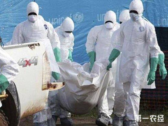 非洲刚果又现埃博拉疫情 世卫派遣专家协助控制疫情