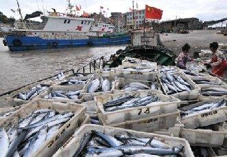 崇明岛:开展水上交通安全知识培训课 使渔民提高安全技能