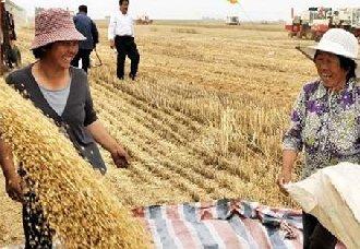 """河北:""""好麦好面,全民营养"""" 举办中国优质麦产业发展论坛"""