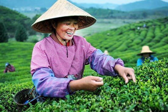 新型职业农民数量达1500万了国家再发20亿资金!