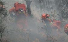 云南大理美女山森林火灾明火已扑灭 共出动千人及5架直升机