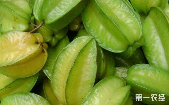 河南万邦水果市场行情:杨桃量小价高 西瓜量大价低