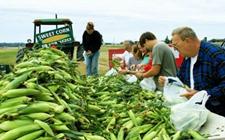 您的餐桌多了新选择,更多美国农产品进入国内市场