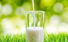 从源头狠抓乳品质量,振兴中国奶业