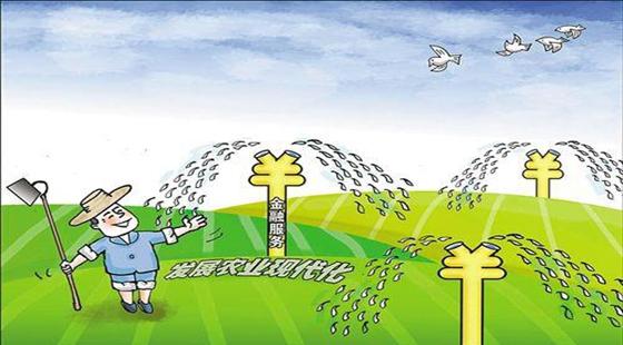 严守农业信贷底线,形成农业信贷担保体系