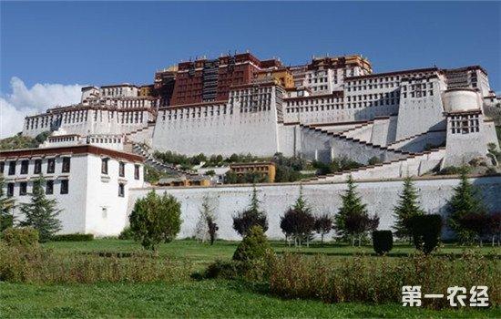 绿水青山带来金山银山 西藏发展全域全时旅游